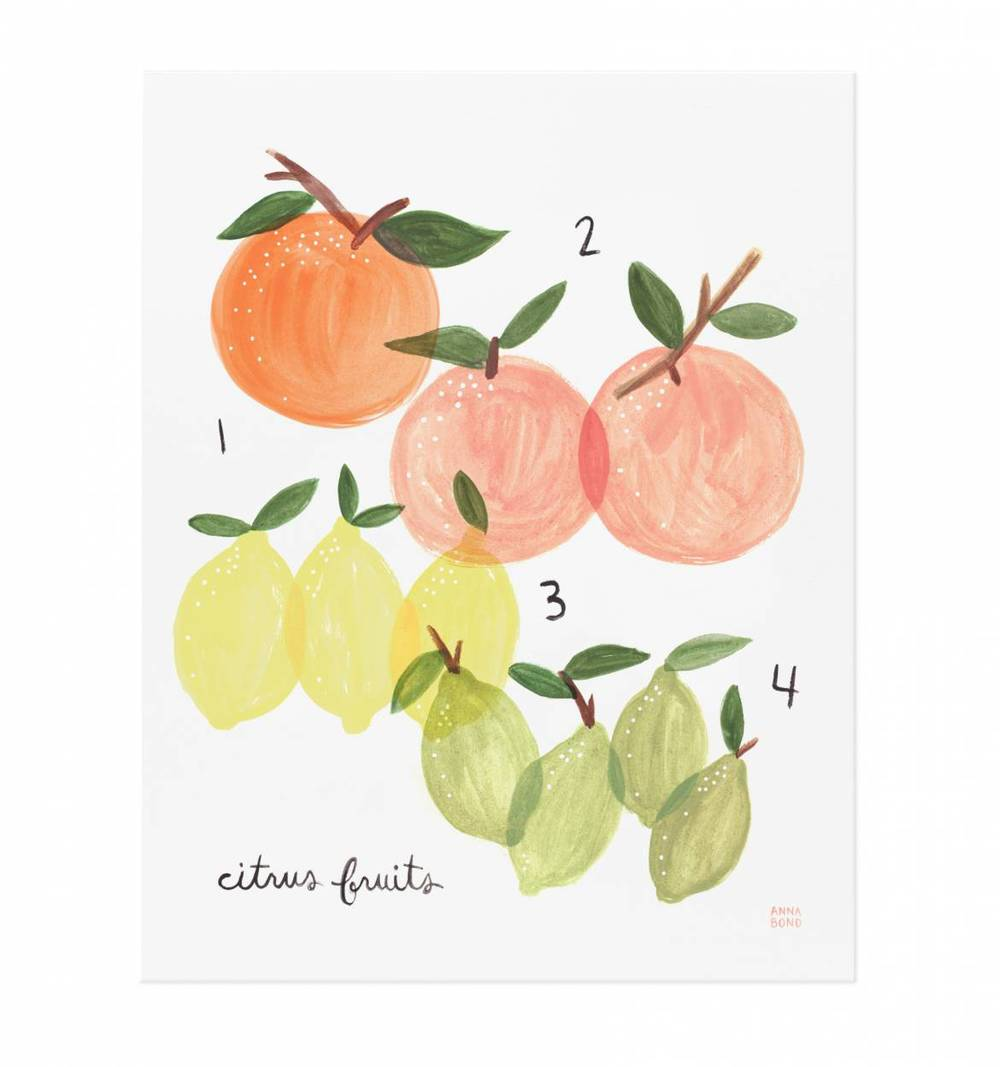 citrus-fruits-illustrated-art-print-01_2.jpg