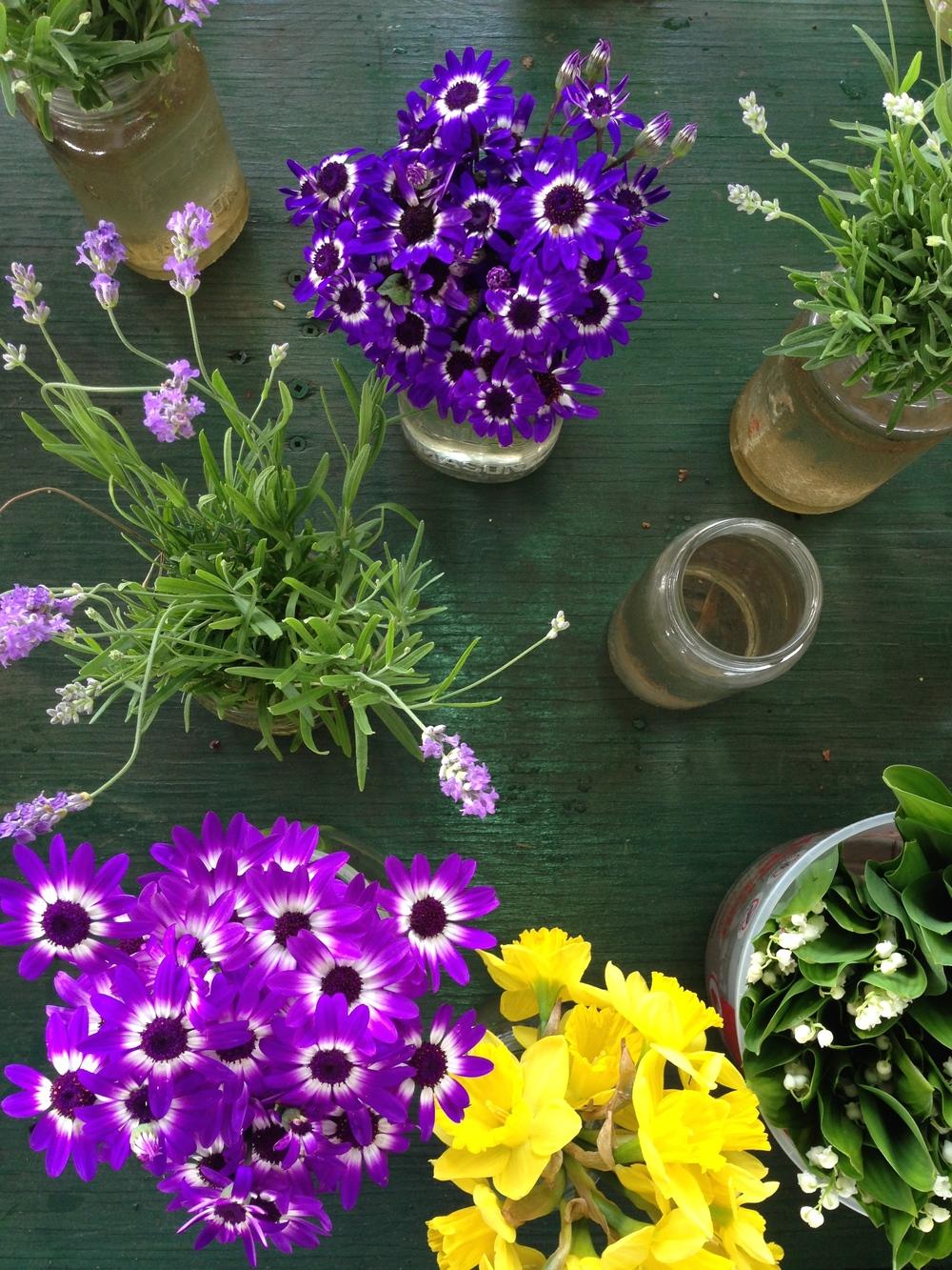 Fleurs sauvages au marché Jean-Talon