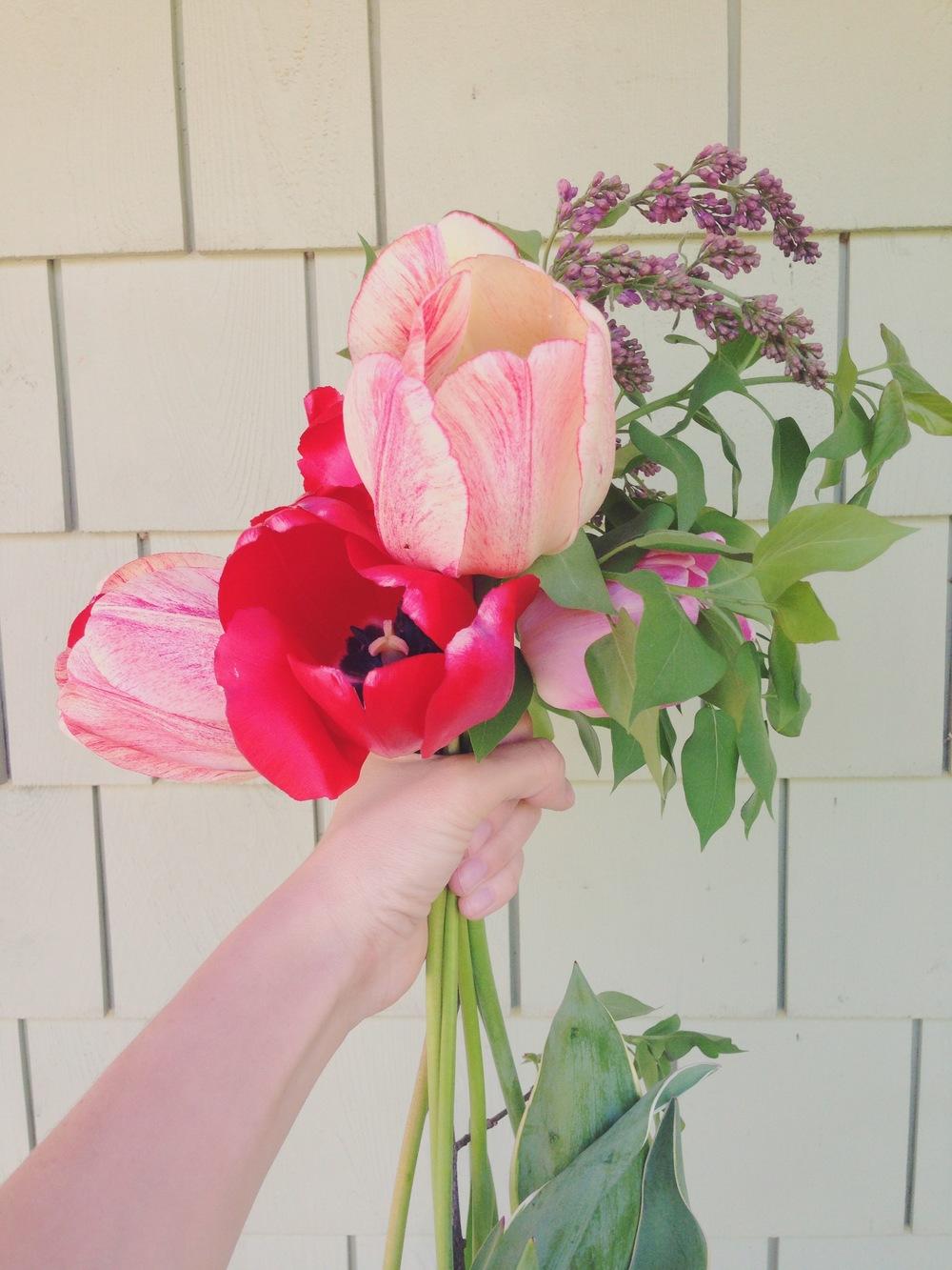 Bouquet de fleurs fait à Orford la fin de semaine dernière :)