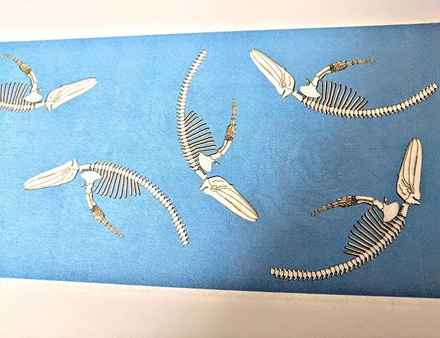 Back with a Splash 🐳 Sorry we have been a bit quiet recently, we have been busy working on new designs and products.  Here is a sneak peak of our whale skeleton print.  #whale #whales #whaleprint #whaleskeleton #printdesign #etsyseller #artwork #workinprogress #design