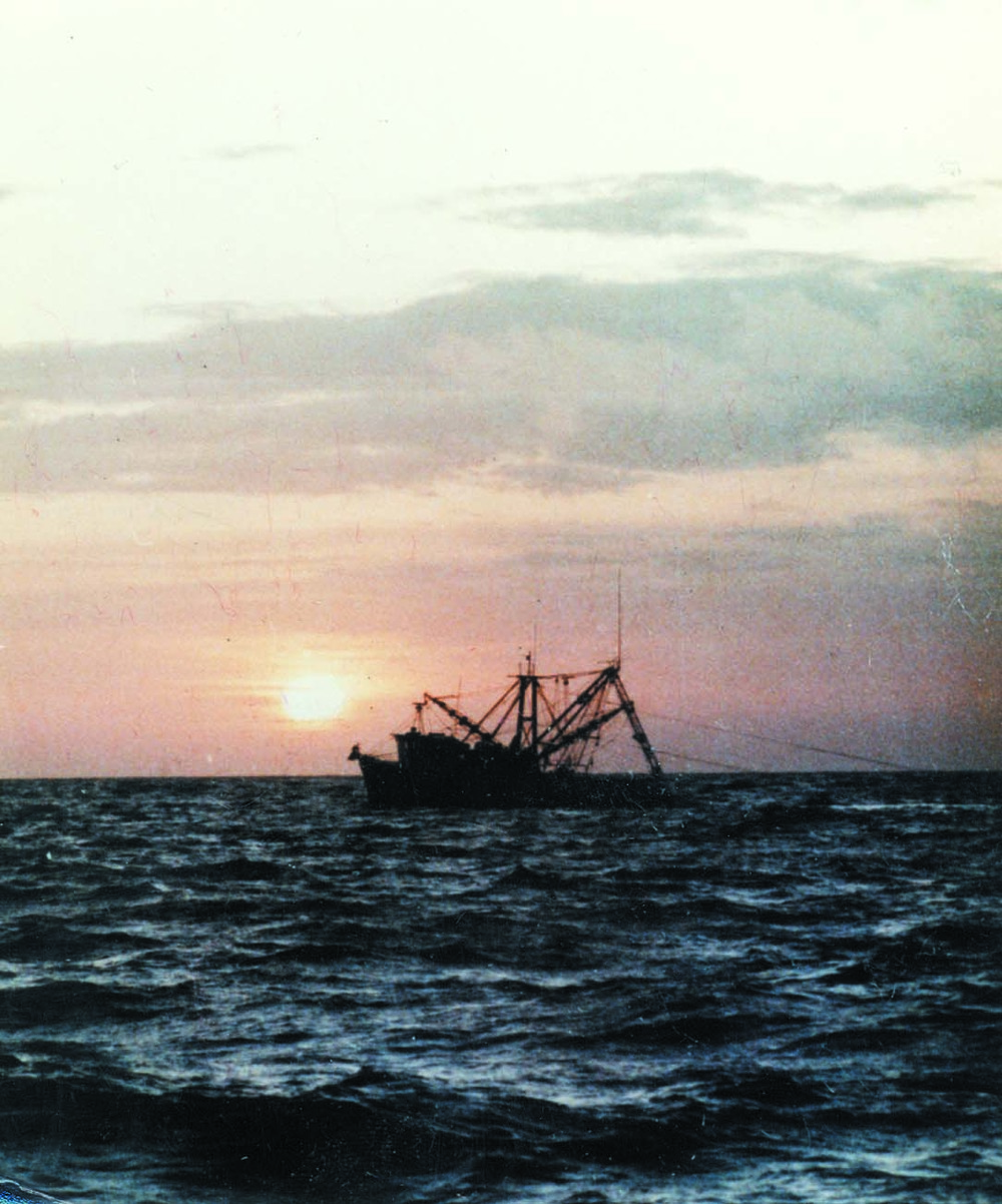 sunsetboat.jpg