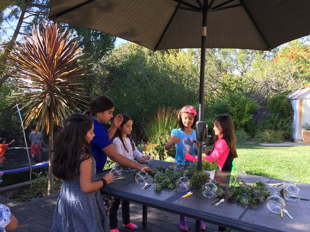 kids fun succulent terrarium.jpg