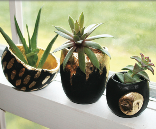 Pinch Pot Air Plant Vases