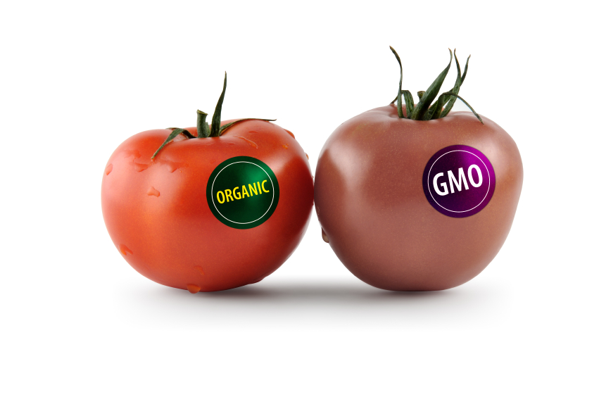 genetically-modified-food1.jpg