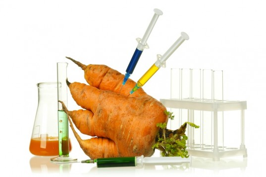 Engineered-Carrot-537x357.jpg