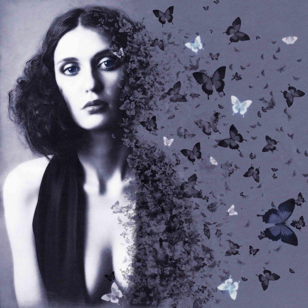 butterflies scattering