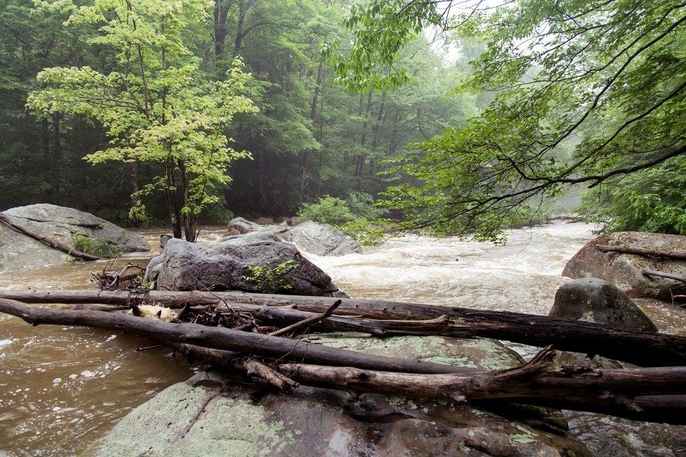 abrams-creek-west-virginia
