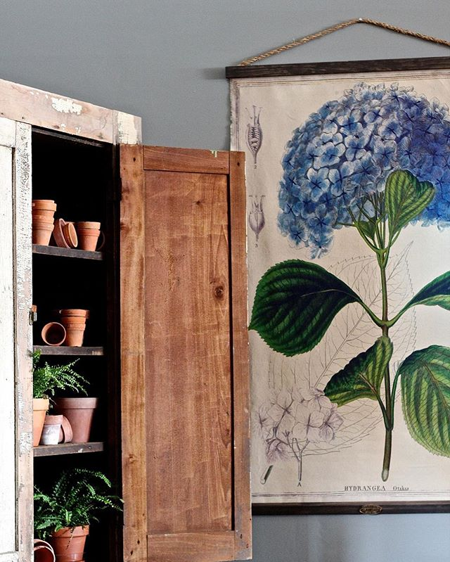 New on our online shop this week: longtime Old Glory favorite, these hydrangea wall charts! . Head over to shopoldglorystyle.com to browse the other new products we've added this week (link in our profile). . #oldglorystyle #shopoldglorystyle #oldgloryantiques #shopsmall #denverantiques #onlineshopping