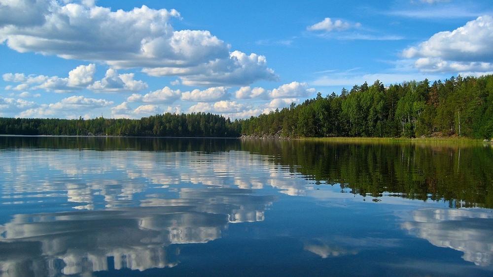 Смотреть все участки на лесных озерах