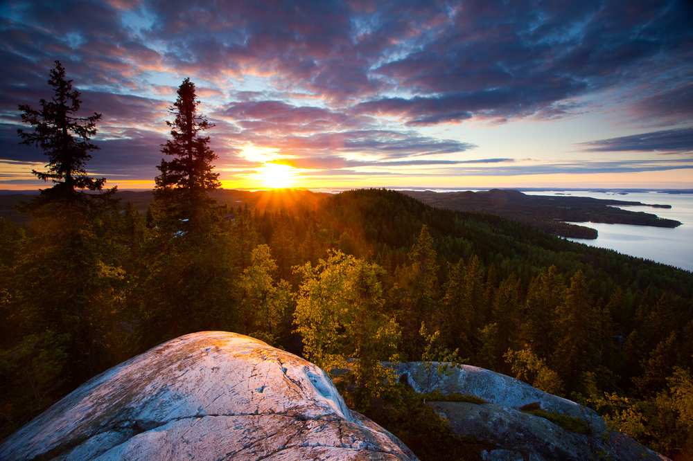 national-park-koli.jpg