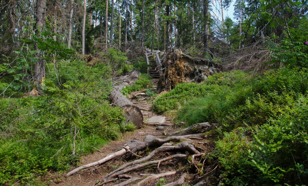 14072013_Helvetinjärven+kansallispuisto_022.jpg