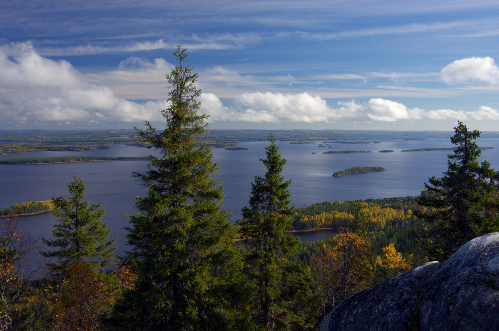 Koli_National_Park,_North_Karelia,_Finland_-_Scenery_from_Ukkokoli.jpeg