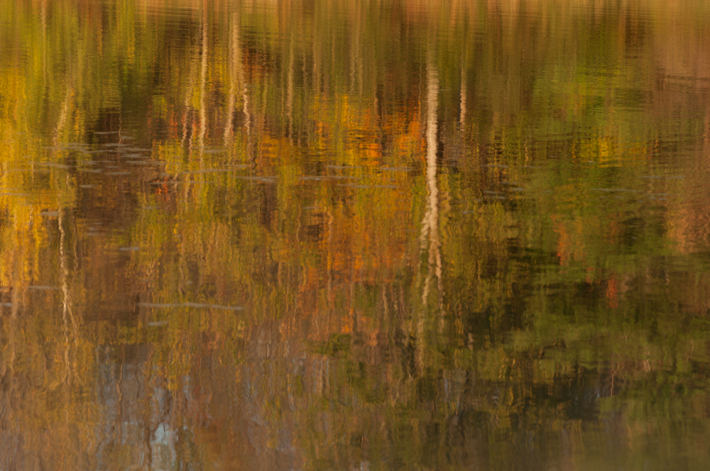 Fall colors reflected in a lake - Vermont