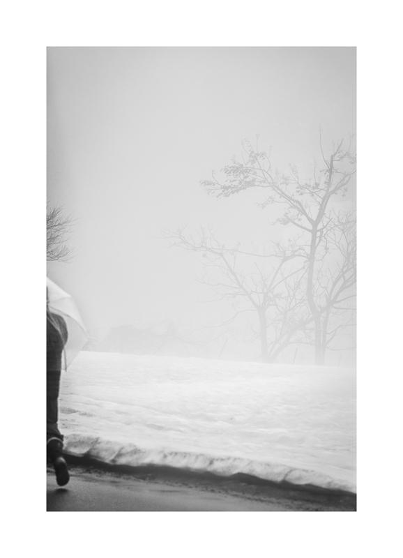 Transparent (0532).jpg