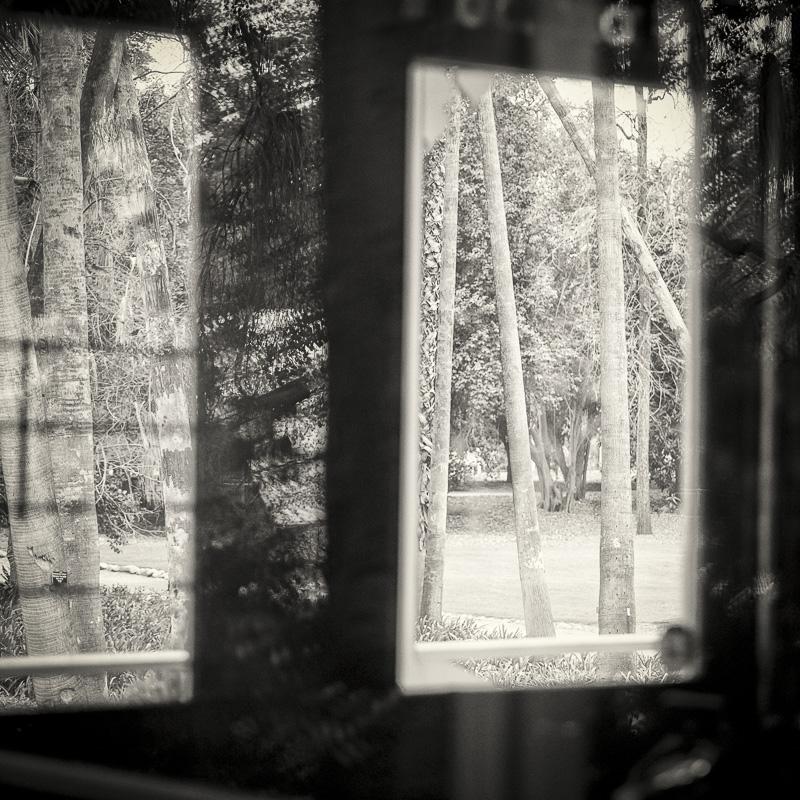 misthaven by Amy Kanka valadarsky