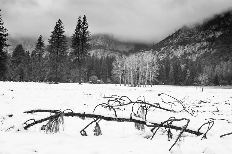 Yosemite, Dec 31, 2016