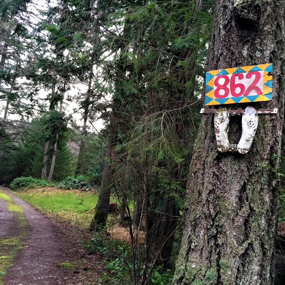 A Woodland Retreat...
