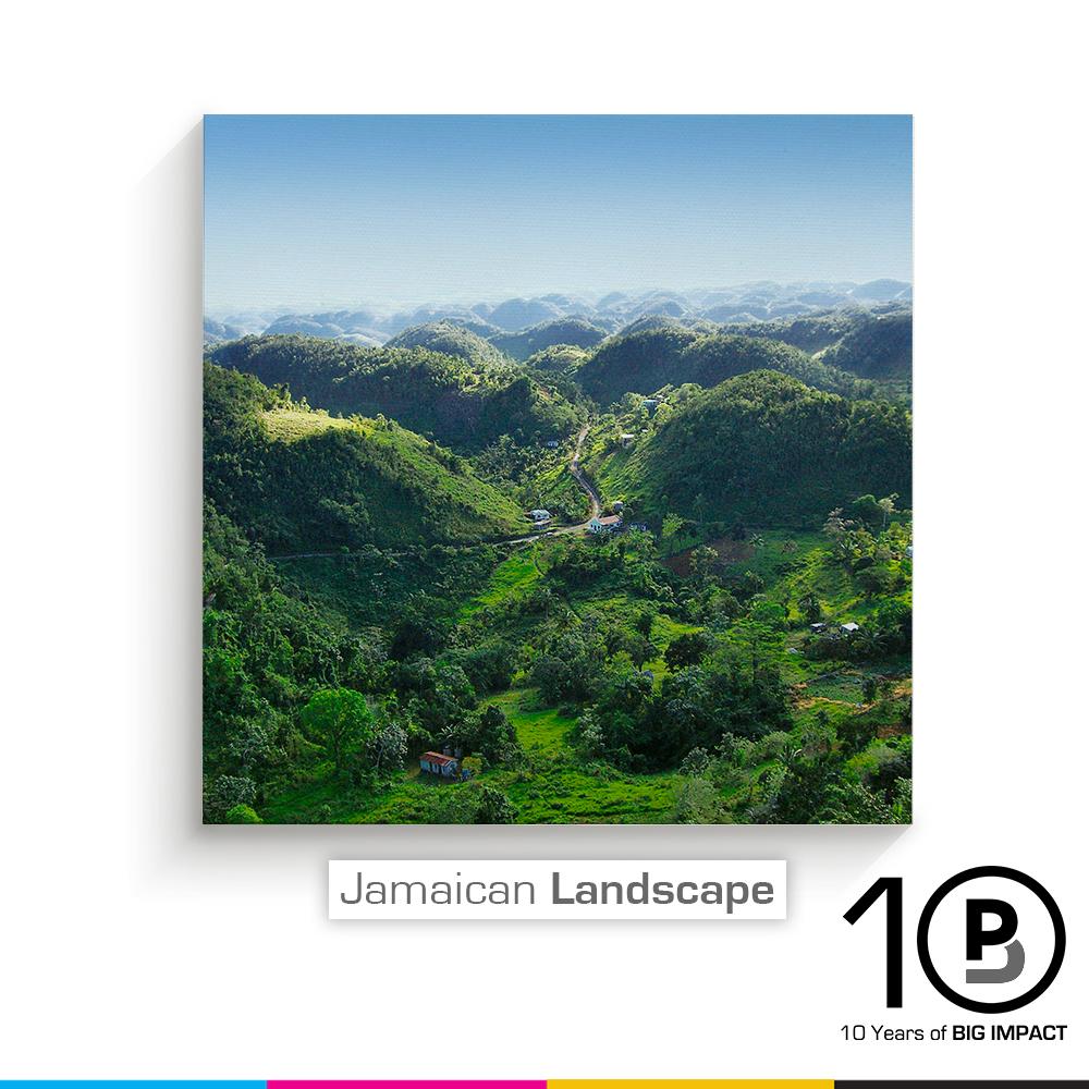 PBJ_JAMAICAN_LANDSCAPE.jpg