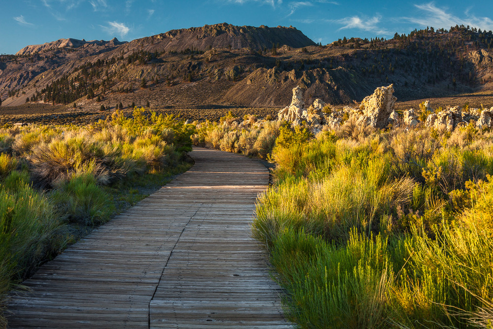 003_Along the path to mono lake.jpg