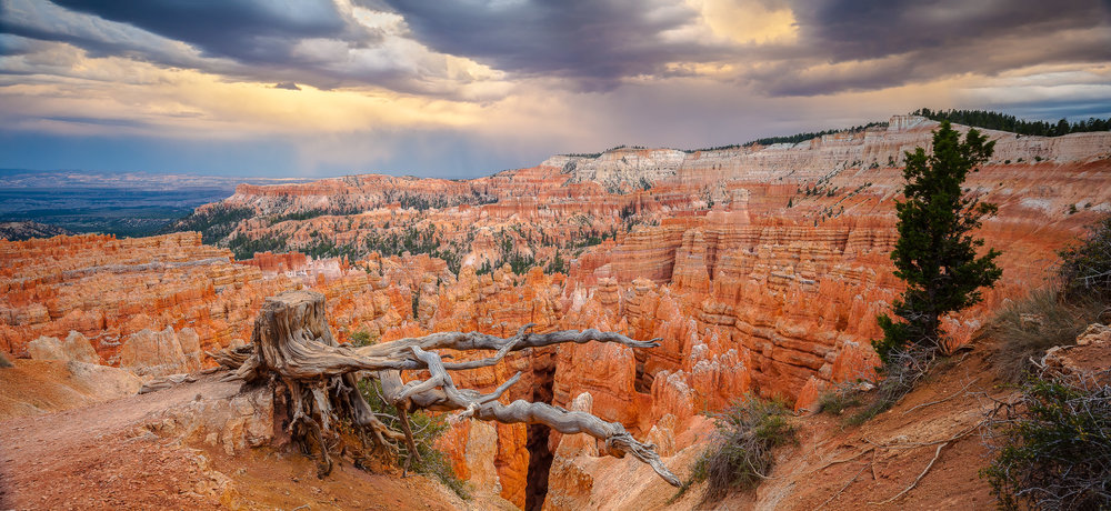 Wrinkled Fingers - Bryce Canyon-008.jpg