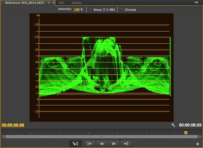 Use the waveform monitor to assess the tonality of your video. Make edits accordingly.