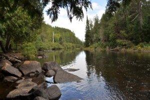 Barron River Beauty