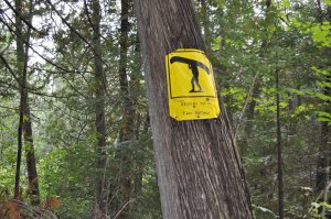 Barron River Portage Sign