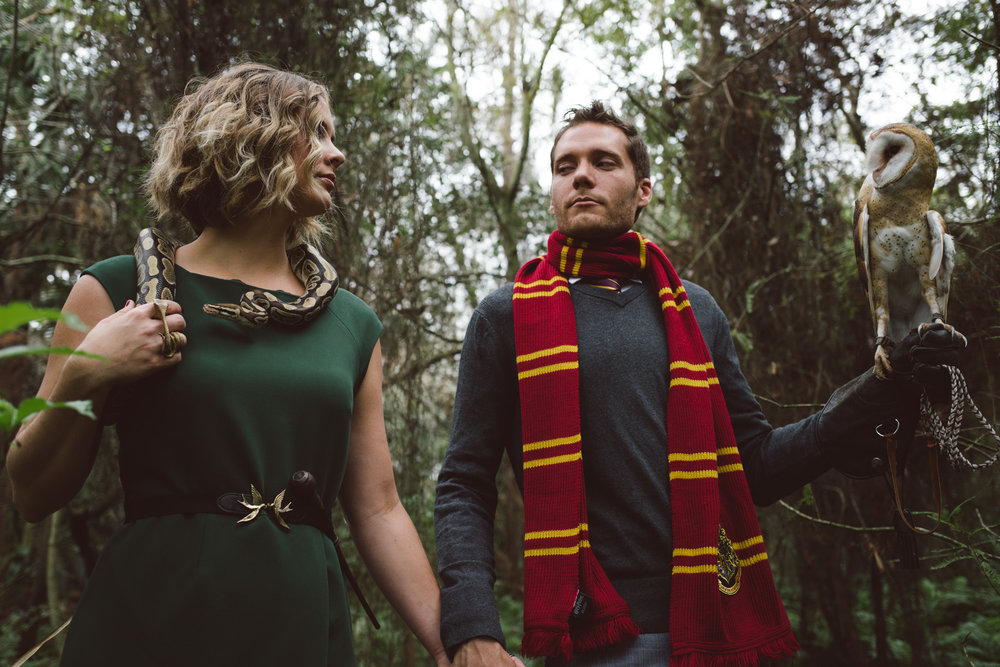 Harry Potter Engagement