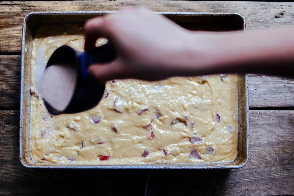 rhubarb+coffee+cake-11.jpg