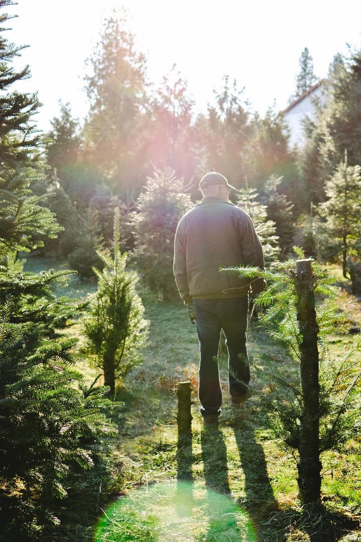 tree+hunting-4.jpg