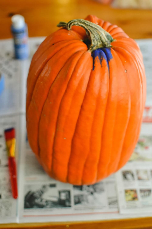 tardis+pumpkin-1.jpg
