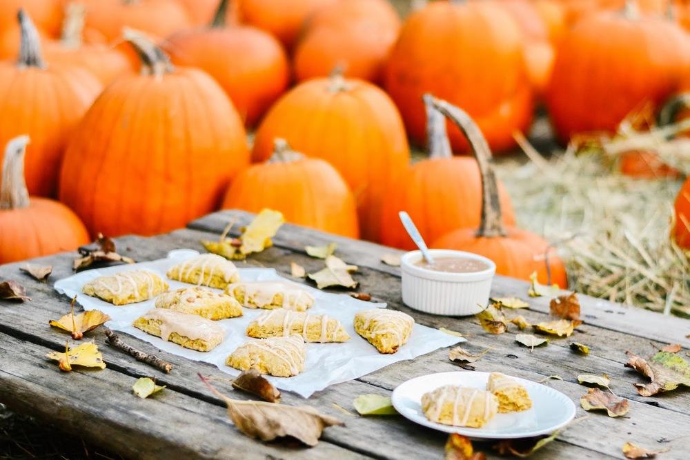 pumpkin+scones-1-2.jpg
