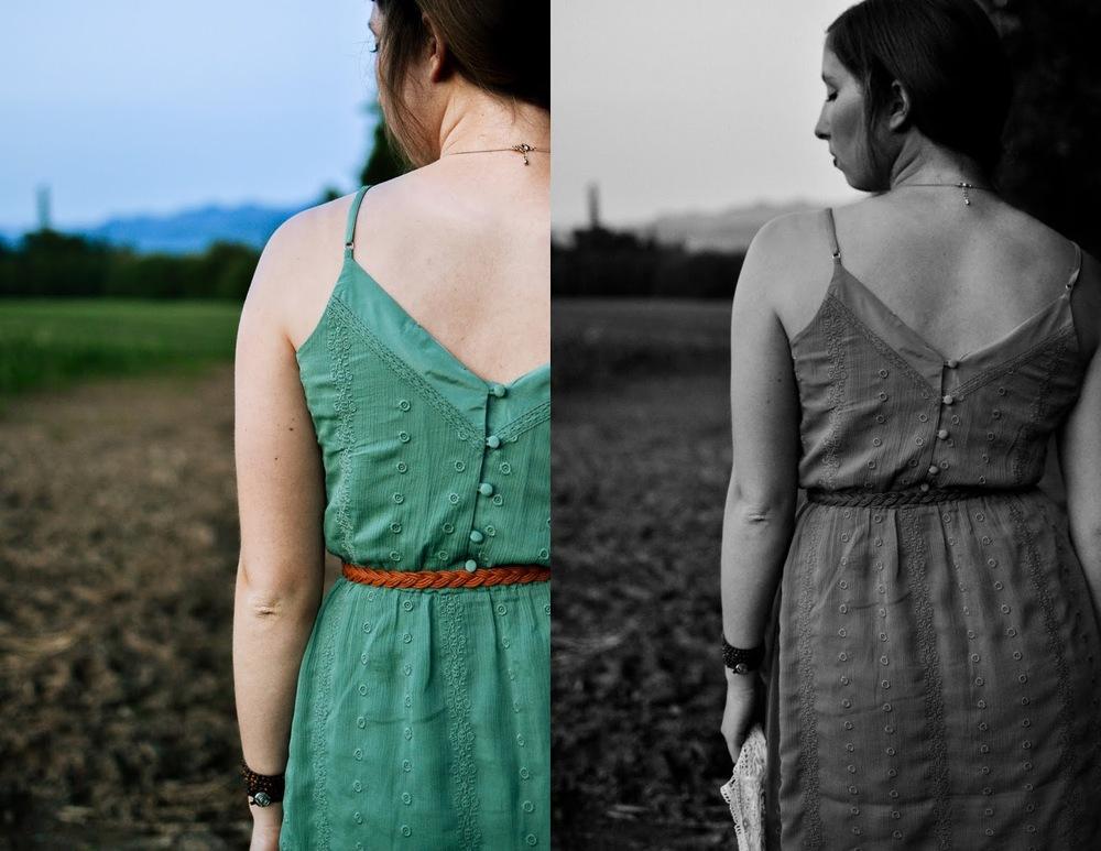bootlegger+hampton+dress2.jpg