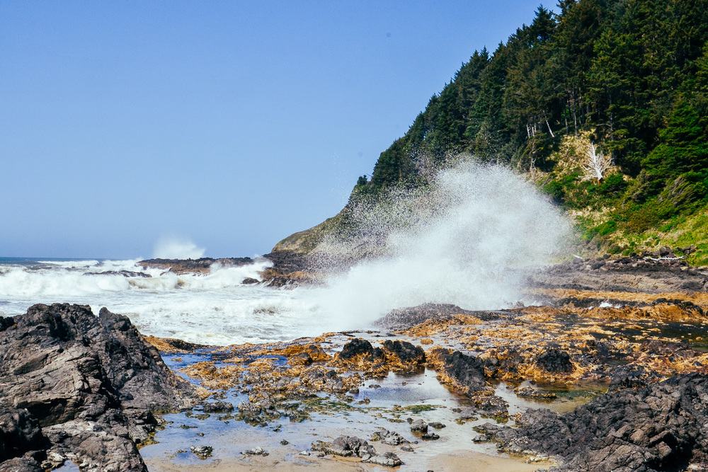 Wild waves at Cape Perpetua