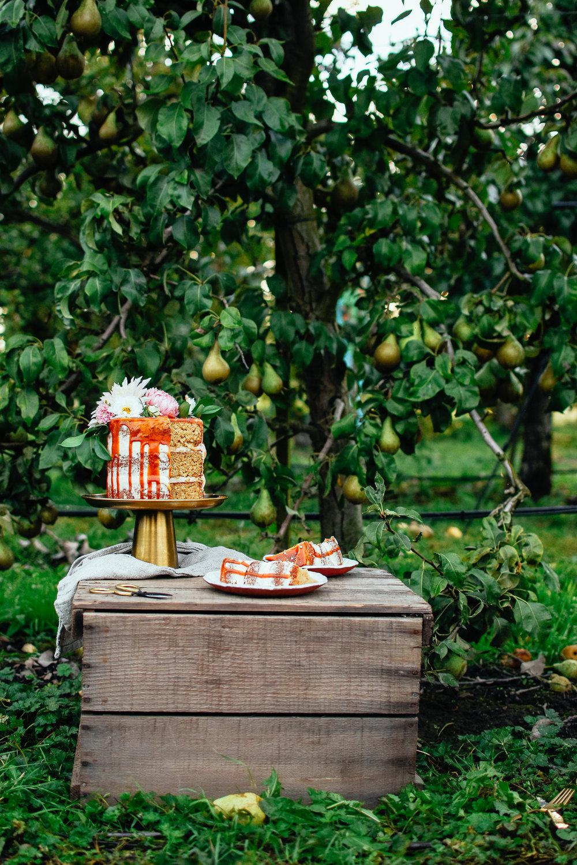 brownsugarspicecake_thefarmersdaughterblog-32.jpg