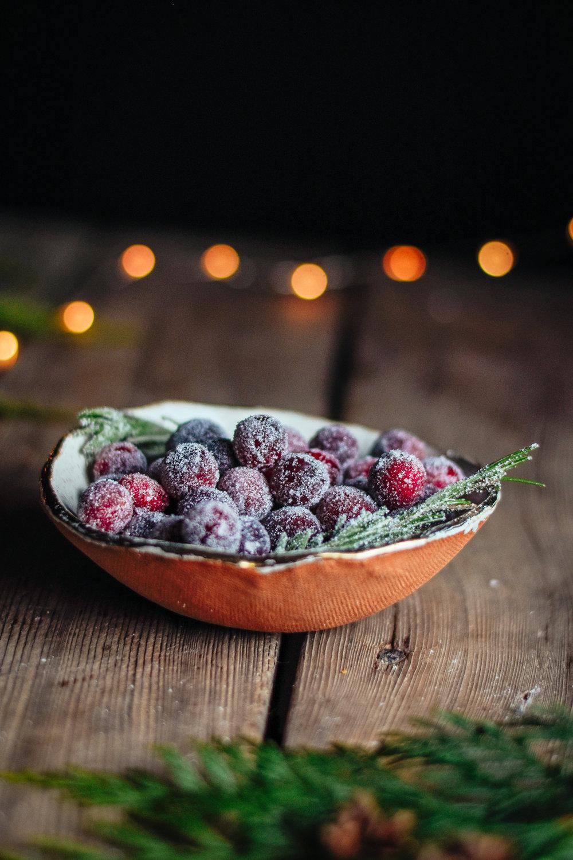 cranberrytart_thefarmersdaughterblog-17.jpg