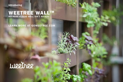 weetree-wall-blog.jpg