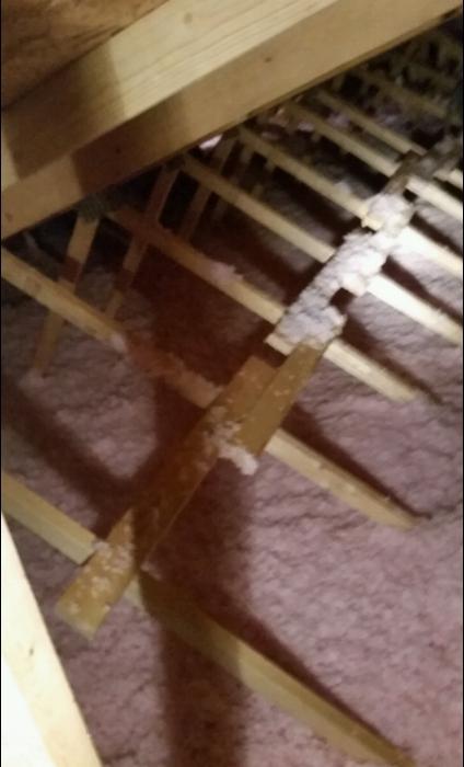fiberglass attic.png