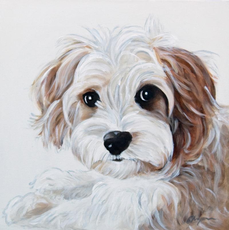 Dog Portrait 5 Xmas 2014 - Debbie Chapman