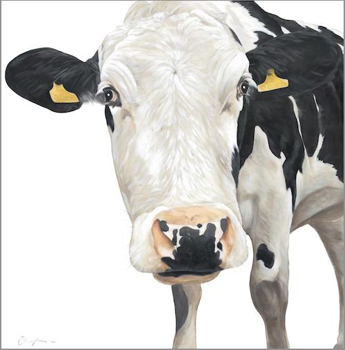 905 Cow fb size.jpg
