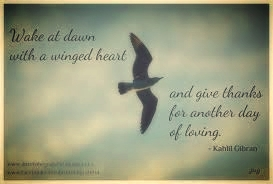 Wake_at_Dawn_with_a_winged_heart_and_give_thanks_for_another_day_of_loving