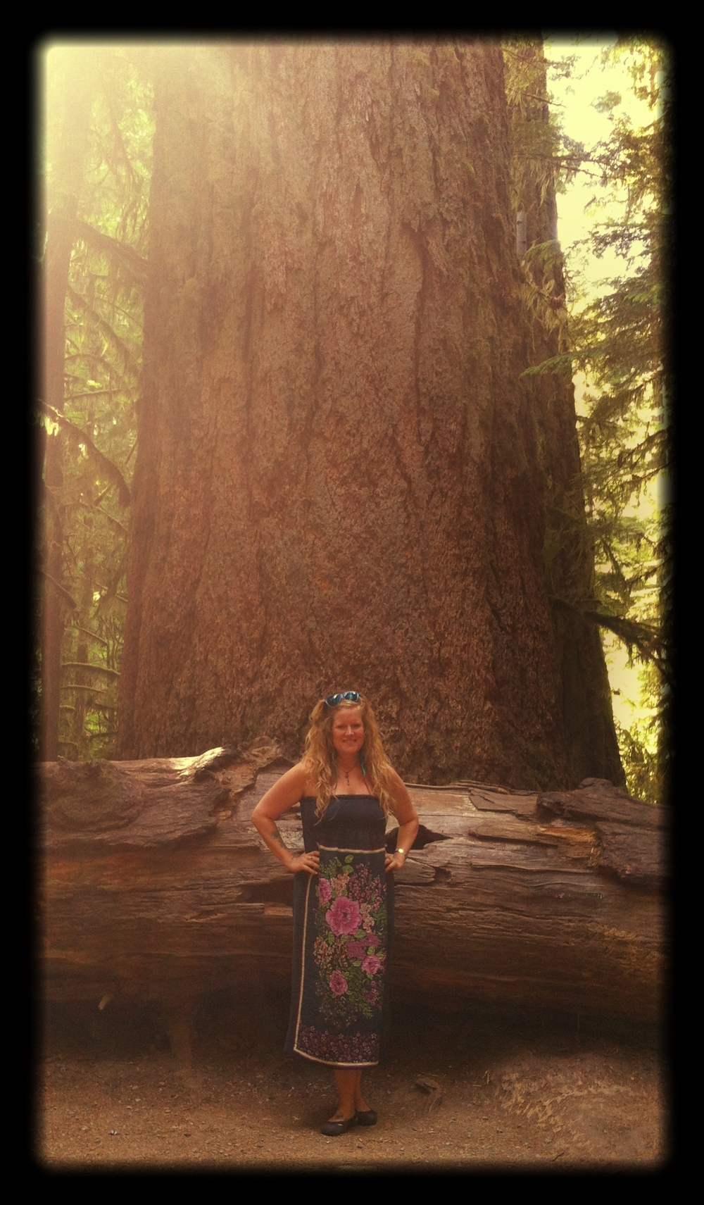 Me_and_a_massively_huge_Douglas_Fir_in_Cathedral_Grove