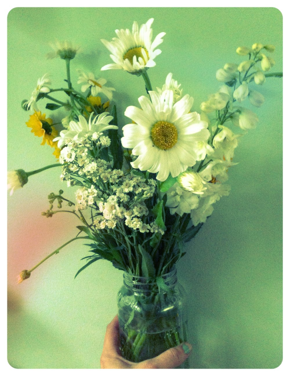A_beautiful_vase_of_fresh_flowers