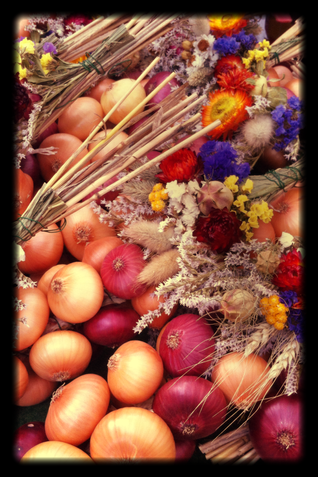 Decorated_delish_colourful_onions