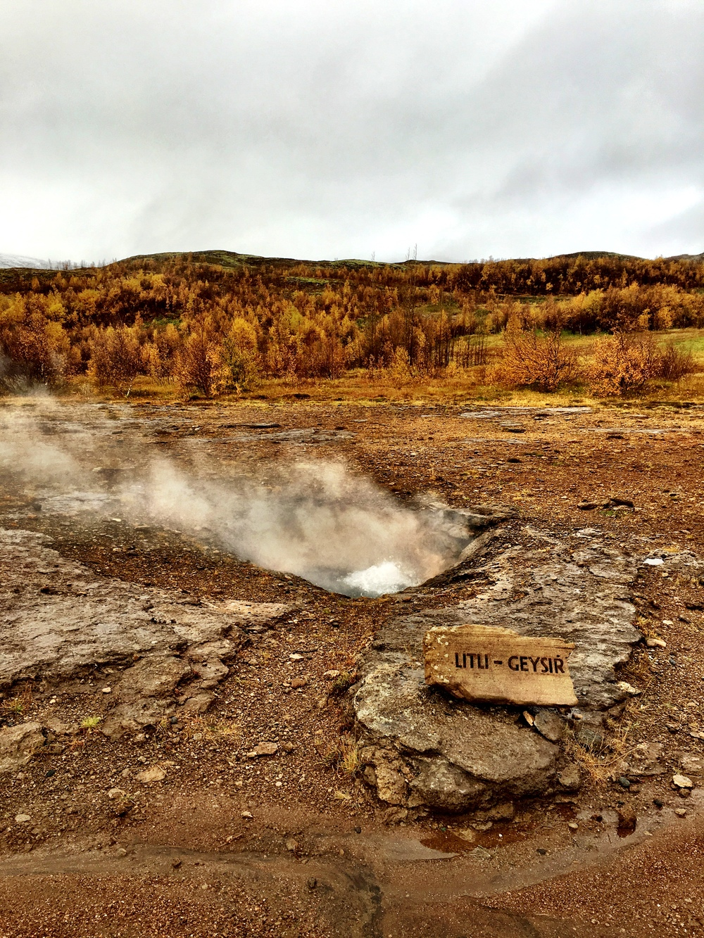 Lil' Geysir- Golden Circle Tour