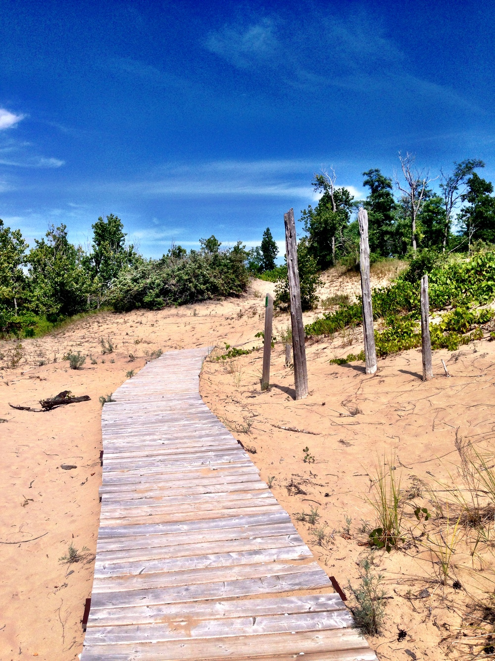 Sandbanks- The Dunes Trail