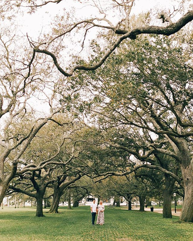 Those trees 😍 #southcarolina #charleston #maternityshoot @photographyanthology