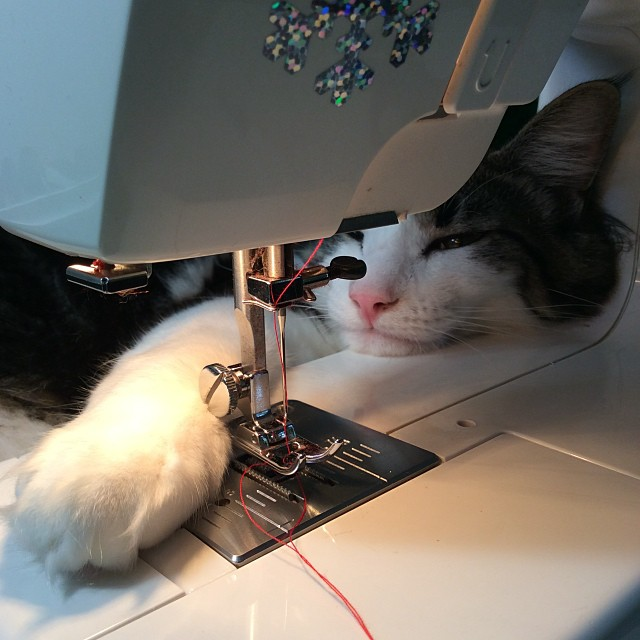 Then I sew. It is very exhausting, but I have lots of help...NOT!
