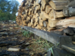 Woodstacked1
