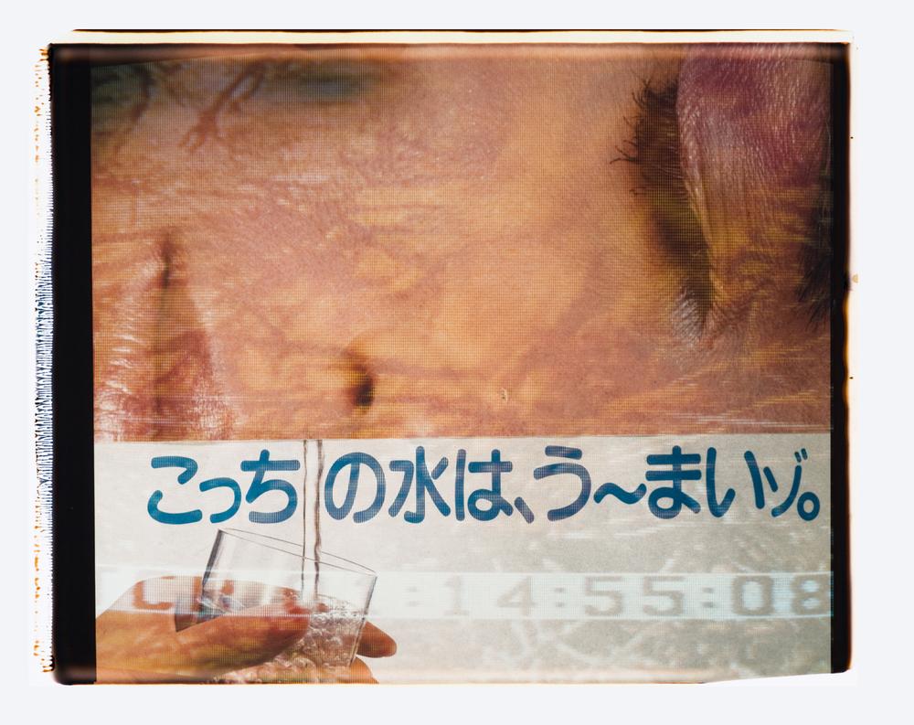 """H2O  Polaroid 20""""X24"""" 1987"""